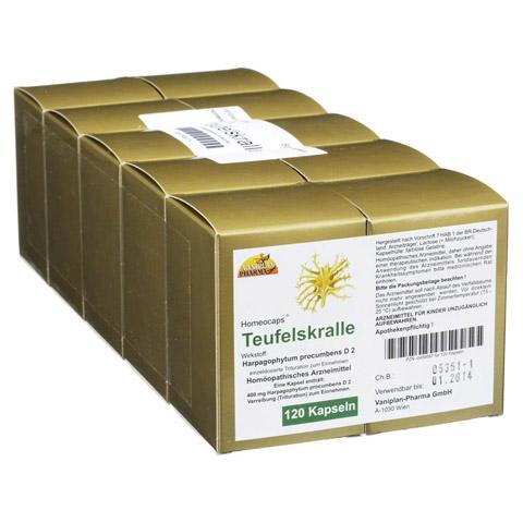 TEUFELSKRALLE KAPSELN 120 Stück N1