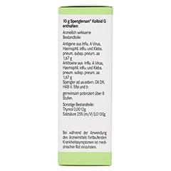 SPENGLERSAN Kolloid G 50 Milliliter N2 - Rechte Seite