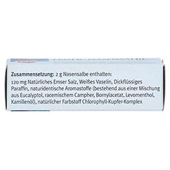 EMSER Nasensalbe Sensitiv 2 Gramm - Unterseite