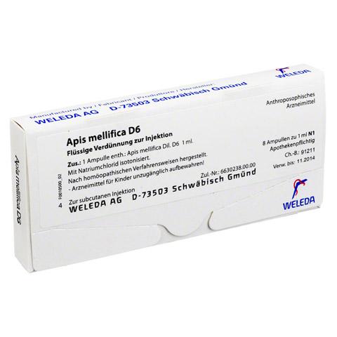 APIS MELLIFICA D 6 Ampullen 8 Stück N1