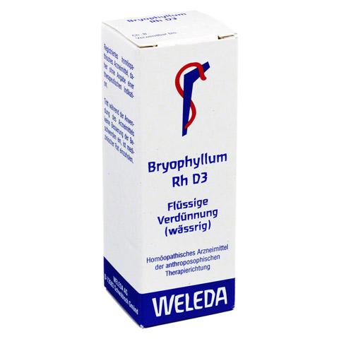 BRYOPHYLLUM RH D 3 Dilution 20 Milliliter N1