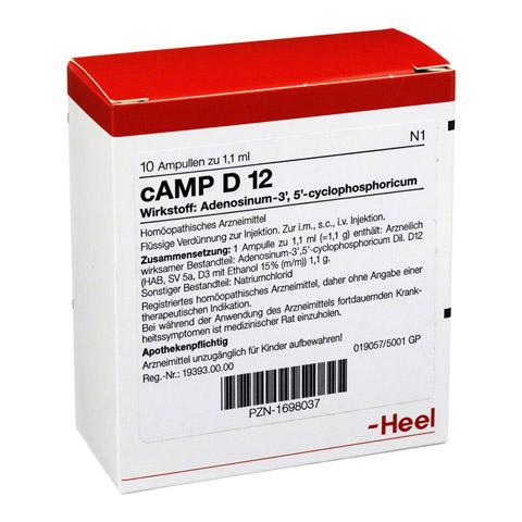 CAMP D 12 Ampullen 10 Stück N1