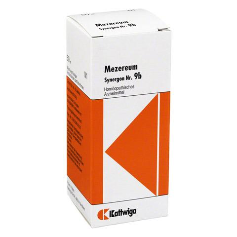 SYNERGON KOMPLEX 9 b Mezereum Tropfen 50 Milliliter N1