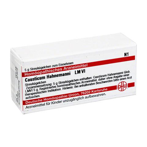 LM CAUSTICUM Hahnemanni VI Globuli 5 Gramm N1