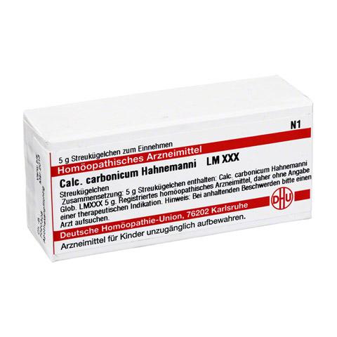 LM CALCIUM carbonicum Hahnemanni XXX Globuli 5 Gramm N1