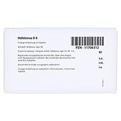 HELLEBORUS D 6 Ampullen 8x1 Milliliter N1 - Rückseite