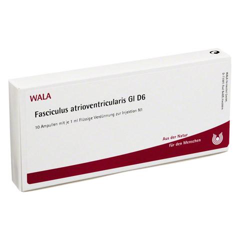 FASCICULUS ATRIOVENTR. GL D 6 Ampullen 10x1 Milliliter N1
