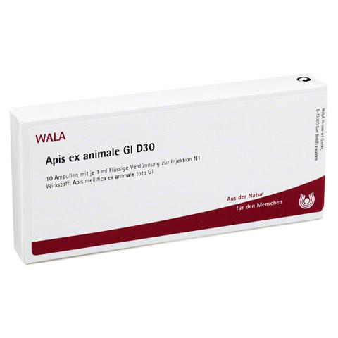 APIS EX ANIMALE GL D 30 Ampullen 10x1 Milliliter N1