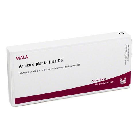 ARNICA E Planta tota D 6 Ampullen 10x1 Milliliter N1