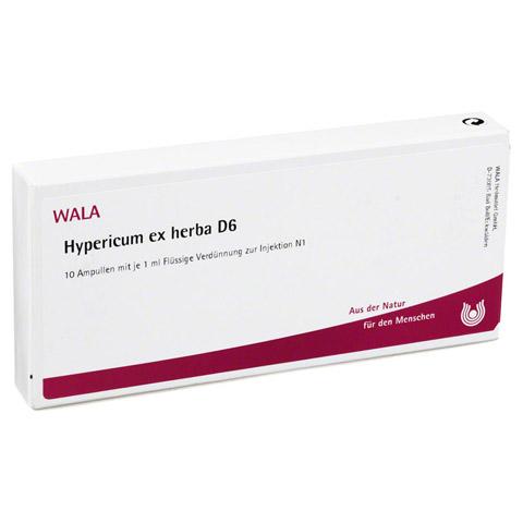 HYPERICUM EX Herba D 6 Ampullen 10x1 Milliliter N1