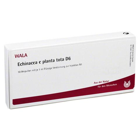 ECHINACEA E planta tota D 6 Ampullen 10x1 Milliliter N1