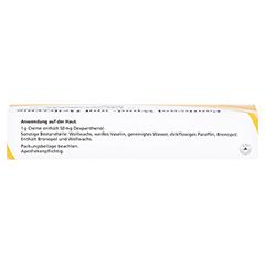 Panthenol Wund- und Heilcreme JENAPHARM 50mg/g 50 Gramm N2 - Oberseite