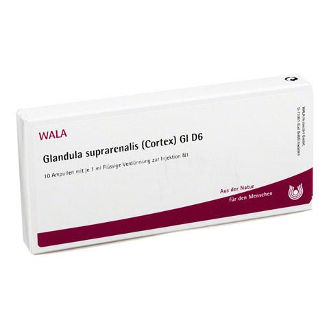 GLANDULA SUPRARENALES cortex GL D 6 Ampullen 10x1 Milliliter N1