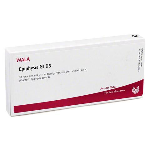 EPIPHYSIS GL D 5 Ampullen 10x1 Milliliter N1