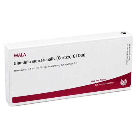 GLANDULA SUPRARENALES cortex GL D 30 Ampullen 10x1 Milliliter N1