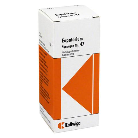 SYNERGON KOMPLEX 47 Eupatorium Tropfen 50 Milliliter N1