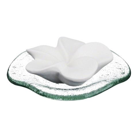 DUFTSTEIN Frangipani Glasteller transparent 1 Stück