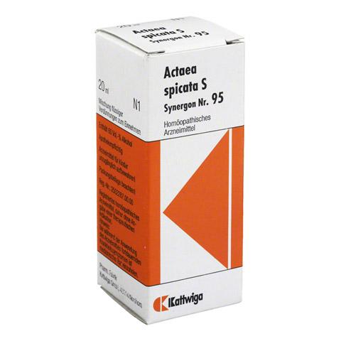 SYNERGON KOMPLEX 95 Actaea spicata S Tropfen 20 Milliliter
