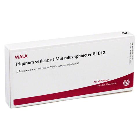 TRIGONUM VES.et Musc.sph.GL D 12 Ampullen 10x1 Milliliter N1