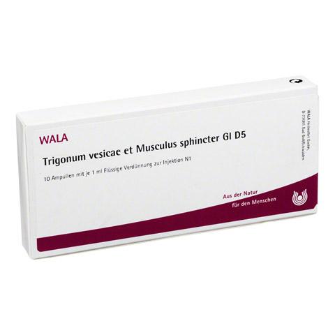TRIGONUM vesicae et Musculus sphincter GL D 5 Amp. 10x1 Milliliter N1