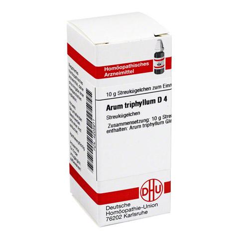 ARUM TRIPHYLLUM D 4 Globuli 10 Gramm N1