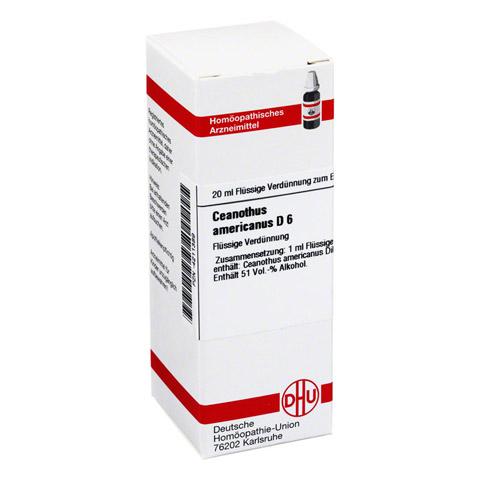 CEANOTHUS AMERICANUS D 6 Dilution 20 Milliliter N1