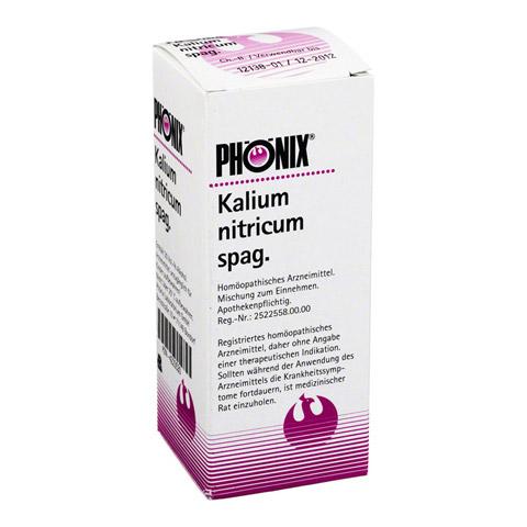 PHÖNIX KALIUM nitricum spag.Tropfen 100 Milliliter N2