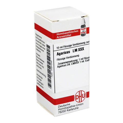 LM AGARICUS XXX Dilution 10 Milliliter N1