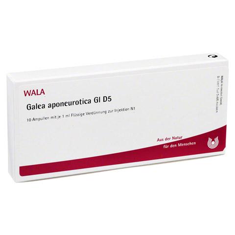 GALEA aponeurotica GL D 5 Ampullen 10x1 Milliliter N1