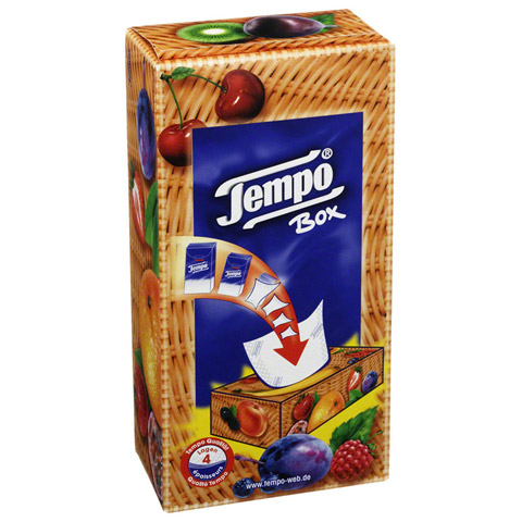 TEMPO Tücher Box Karton 80 Stück