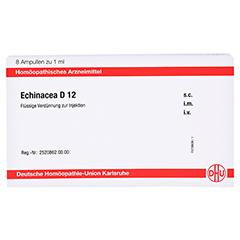 ECHINACEA D 12 Ampullen 8x1 Milliliter N1 - Vorderseite