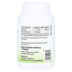 BITTERGURKE 500 mg 10:1 Extrakt Kapseln 120 Stück - Linke Seite
