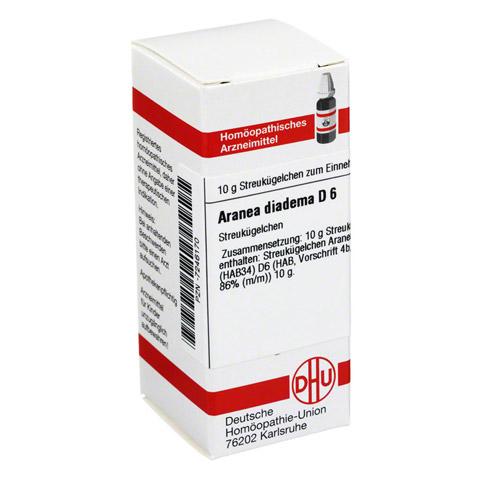 ARANEA DIADEMA D 6 Globuli 10 Gramm N1