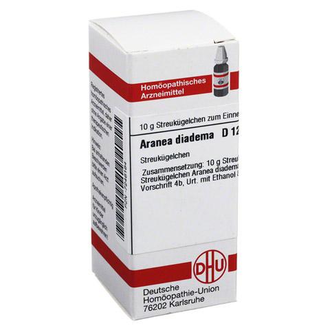 ARANEA DIADEMA D 12 Globuli 10 Gramm N1