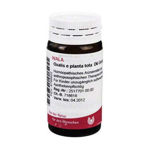 OXALIS E planta tota D 6 Globuli 20 Gramm N1