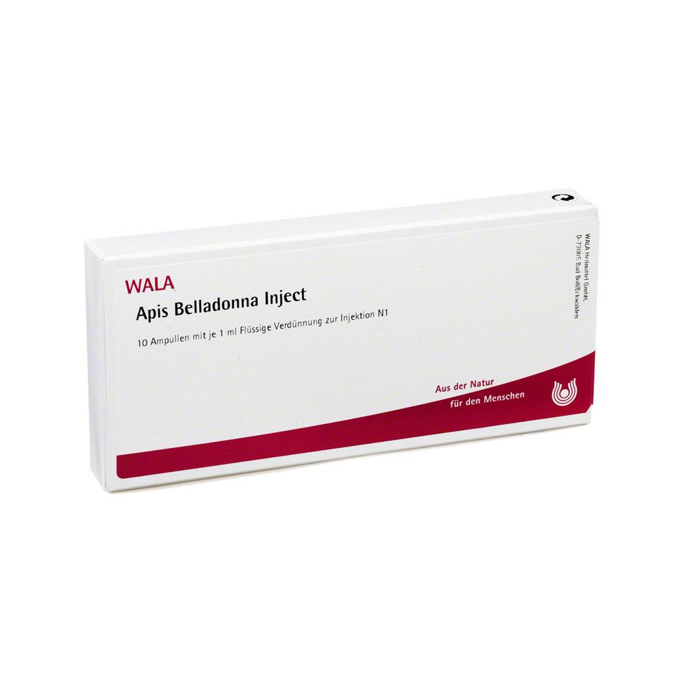 apis-belladonna-inject-ampullen-10x1-milliliter