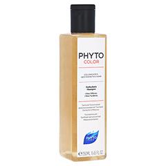 PHYTOCOLOR Farbschutz Shampoo Coloriertes Haar 250 Milliliter
