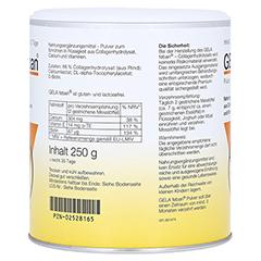 GELA FEBAN Pulver m.Gelatinehydrolysat plus 250 Gramm - Rechte Seite