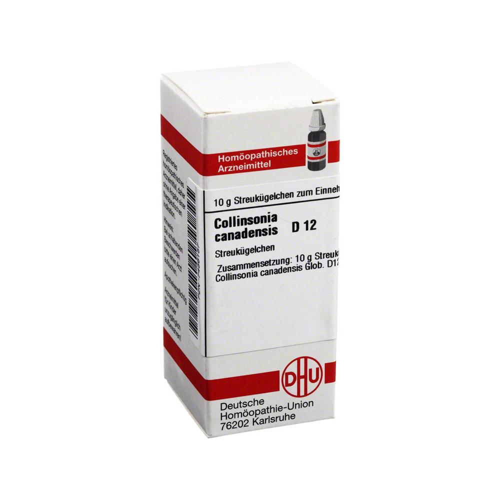 collinsonia-canadensis-d-12-globuli-10-gramm