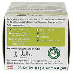 DR.KOTTAS Käsepappeltee Filterbeutel 20 Stück - Rechte Seite