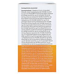 UBICHINON compositum ad us.vet.Ampullen 100 Stück - Rechte Seite