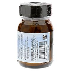 COLOSTRUM VON schweizer Schafen mit Vitamin C Kps. 55 Stück - Rückseite