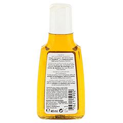 RAUSCH Huflattich Anti Schuppen Shampoo 40 Milliliter - Rückseite
