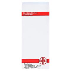 ANAGALLIS ARVENSIS D 12 Tabletten 80 Stück N1 - Rückseite
