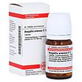 ANAGALLIS ARVENSIS D 12 Tabletten 80 Stück N1
