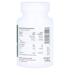 Natural D-mannose 500 mg Kapseln 60 Stück - Rechte Seite