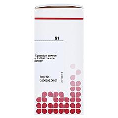 EQUISETUM ARVENSE D 6 Tabletten 80 Stück N1 - Rechte Seite