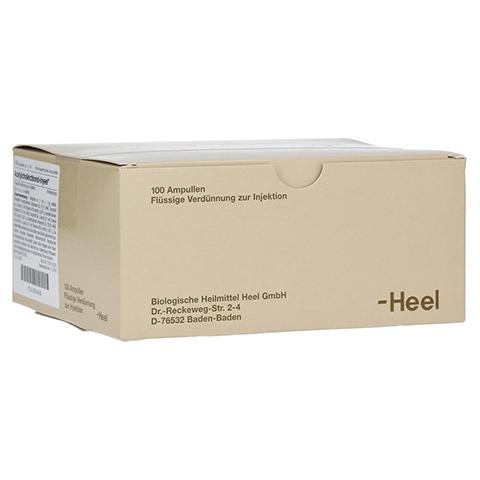 ACETYLCHOLINCHLORID Injeel Ampullen 100 Stück N3