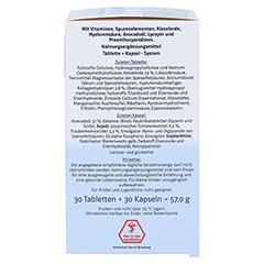 DOPPELHERZ Haut Plus system Tabletten+Kapseln 60 Stück - Rechte Seite