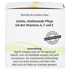 OLIVENÖL & Vitamine vitalisierende Aufbaupfl.m.LSF 50 Milliliter - Rechte Seite